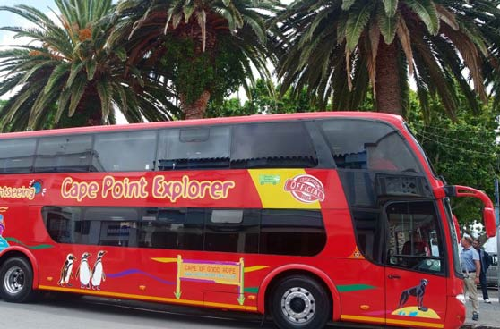 City Sightseeing Cape Town - Cape Point Explorer